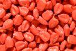 Семена кукурузы - фото