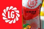 Гибрид подсолнечника ЛГ 5665 КЛ (LG 56.65 CL)