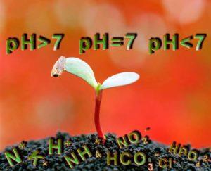 Почвенный раствор