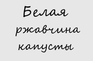 Белая ржавчина капусты