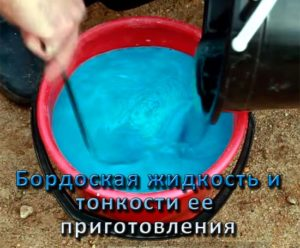 Как приготовить бордоскую жидкость