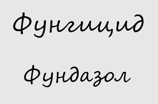 Фунгицид Фундазол
