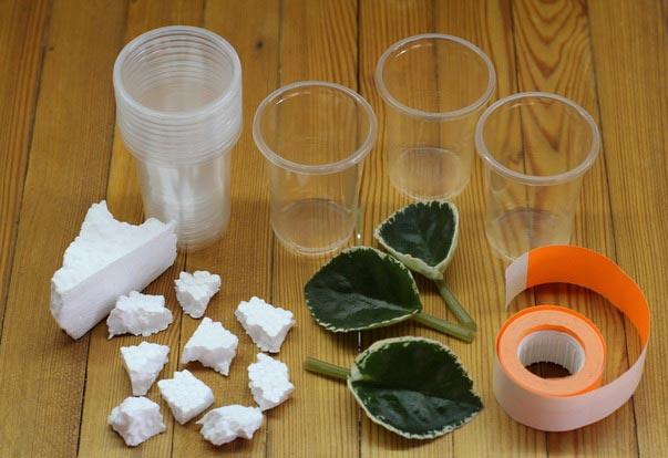 Подготовка емкости к пересадке фиалки
