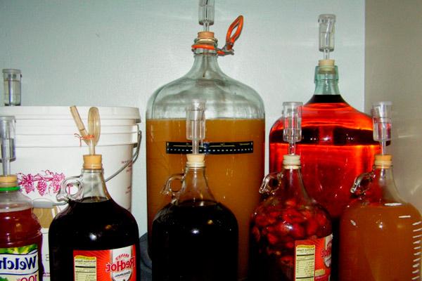Домашнее виноградное вино