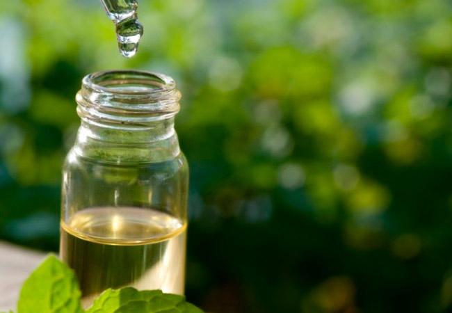 эфирное масло чайного дерева состав