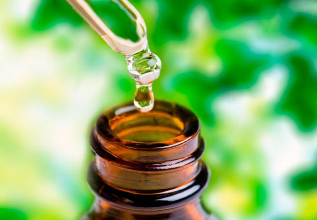 Лечебные свойства периллового масла