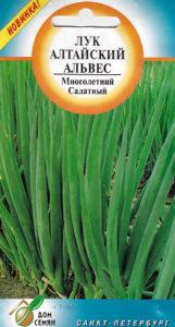 luk-altajskij-alves-vyrashhivanie-semenami-1