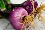 лук брунсвик выращивание из семян