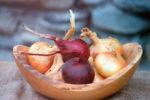 как сохранить покупной лук севок до посадки