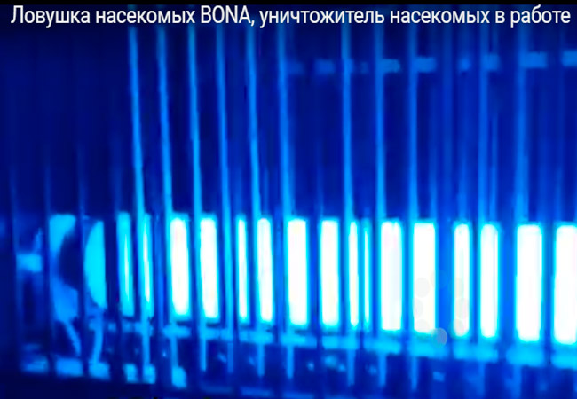 Инсектицидные лампы BONA
