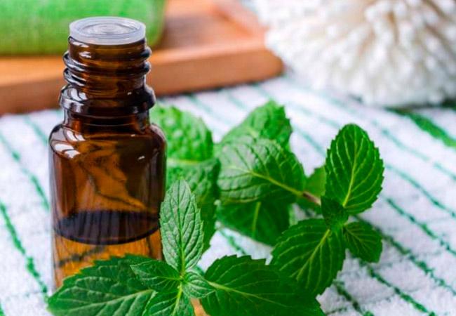 Применение эфирного масла мелиссы в косметологии