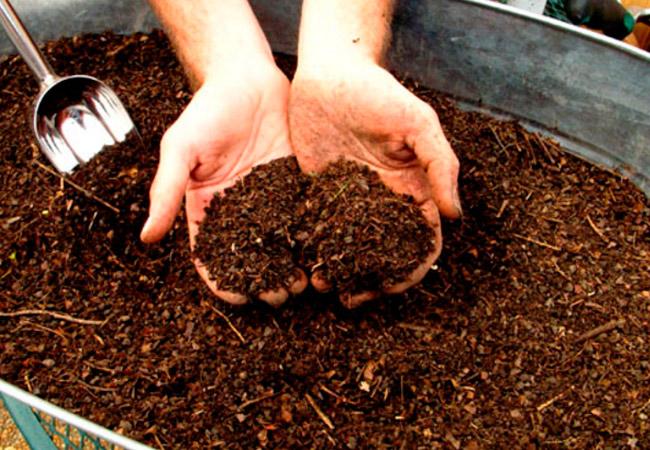 Как подготовить компост для посадки