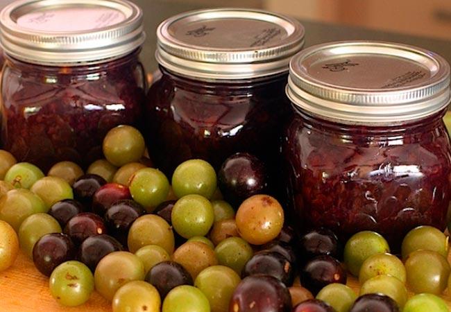 Как консервировать виноград в сиропе