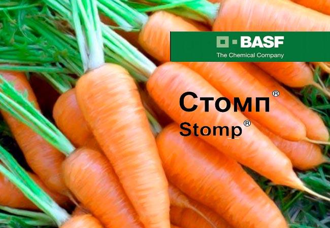 Как использовать «Гезагард» по моркови после всходов
