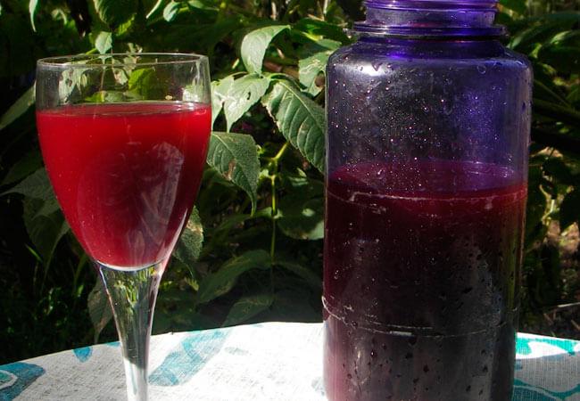 Как приготовить домашнее вино из ягод шелковицы