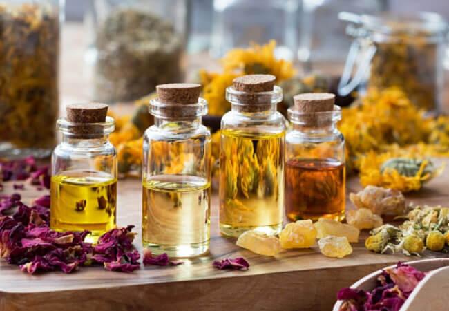Эфирное масло череды, полезные свойства