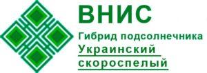 Гибрид подсолнечника Украинский скороспелый