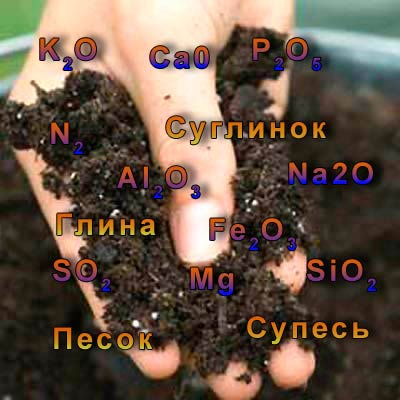 Механический и химический состав почвы