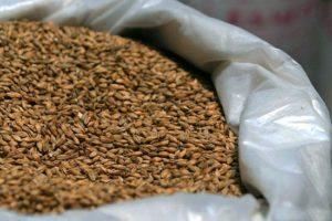 Хранение семян