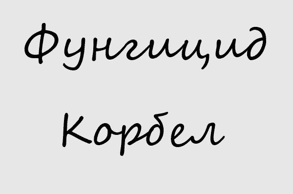 Фунгицид Корбел