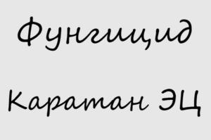 Фунгицид Каратн ЭЦ