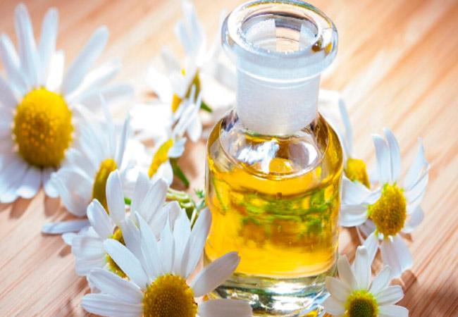 Эфирное масло ромашки: лечебные свойства