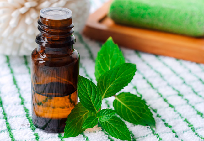 Мятное масло: применение в лечебных целях