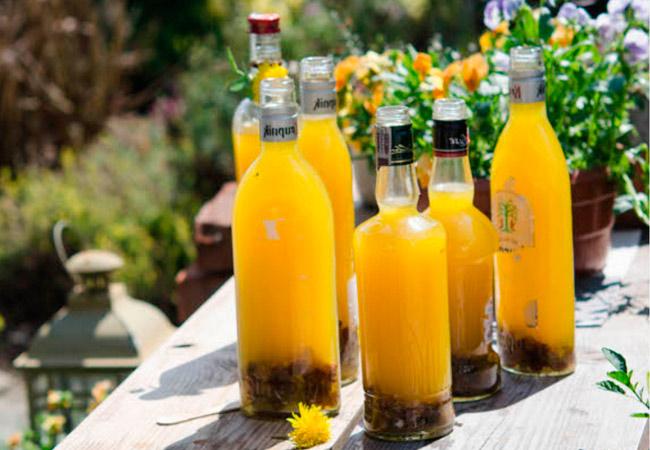 Как сделать вино из одуванчиков, рецепт с медом