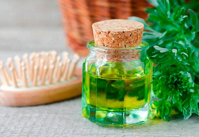 Советы по использованию эфирного масла полыни и его цена
