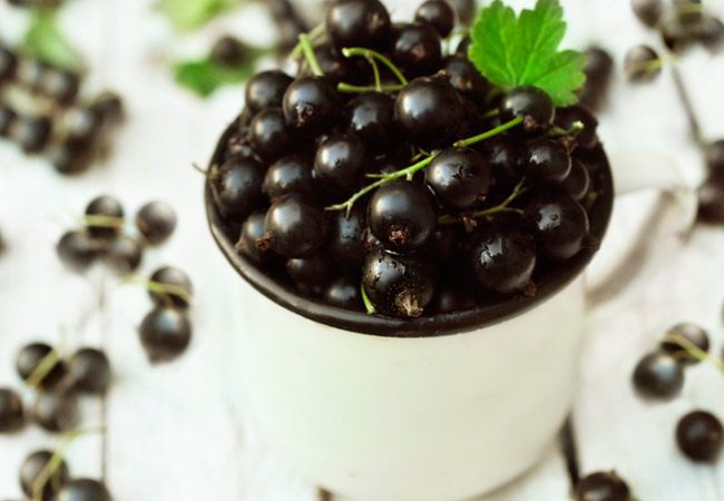 Как сделать крепленое вино из черной смородины