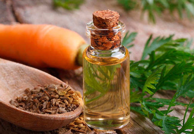 Эфирное масло семян моркови в косметологии