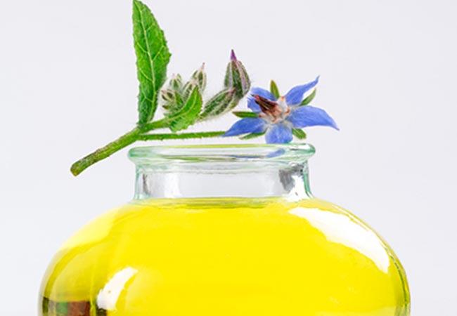 Масло огуречника (бораго), полезные свойства и противопоказания