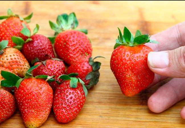 Подготовка ягод для заморозки клубники на зиму