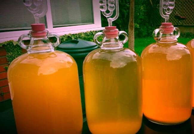 Простой способ производства грушевого вина из дички