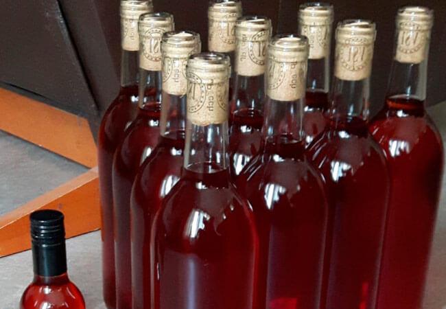 Как сделать вино из забродившего компота вишни