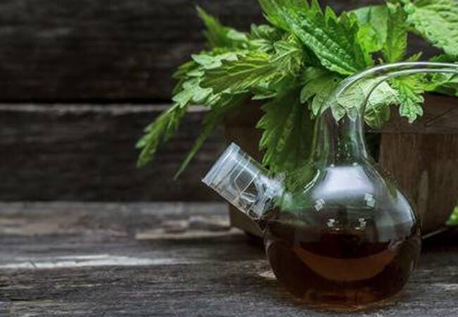 Как сделать крапивное масло дома