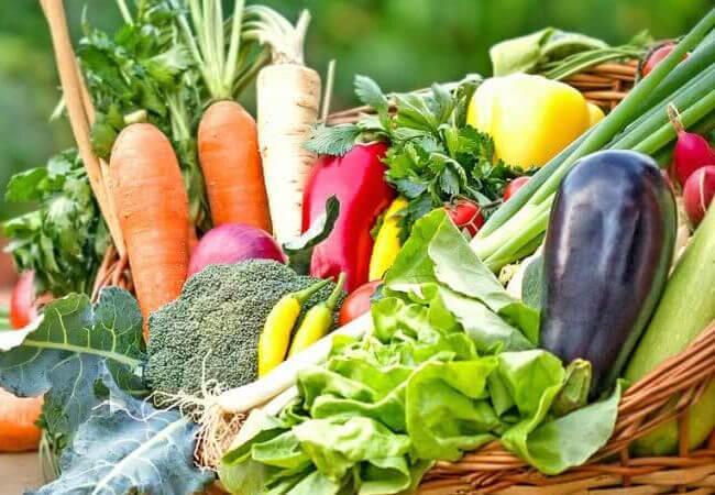 Советы по заготовлению консервированных овощей и фасоли