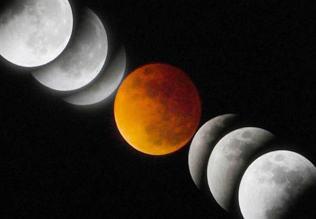 Лунный календарь цветовода на апрель 2019 года