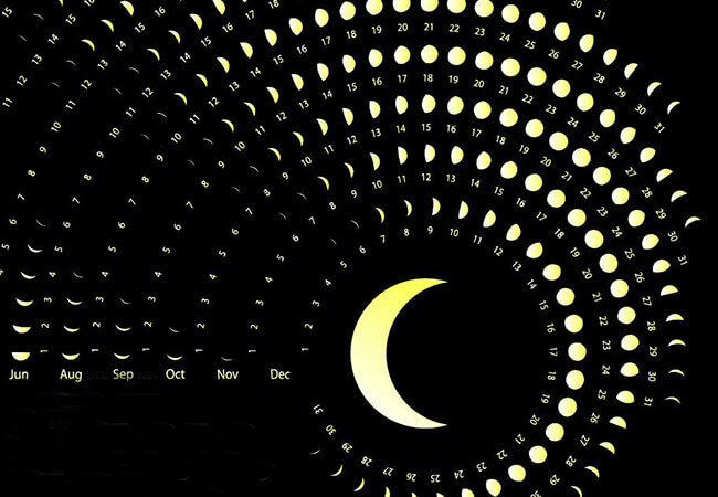 Как влияют лунные циклы на растения