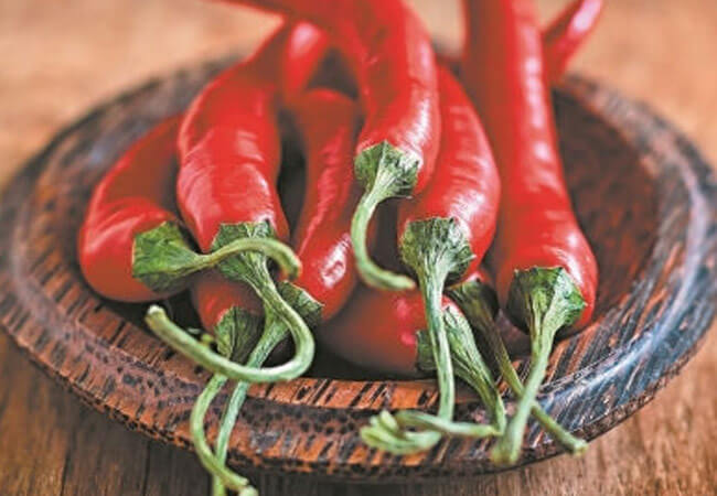 Горький перец против вредителей на капусте