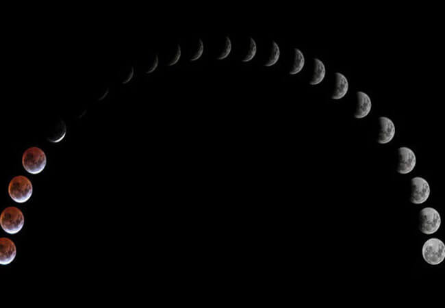 Лунный календарь огородника на июнь 2019