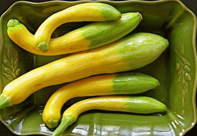 Как приготовить кабачки в томате на зиму