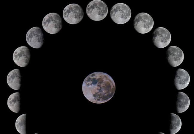 Лунный календарь садовода-огородника на октябрь 2019