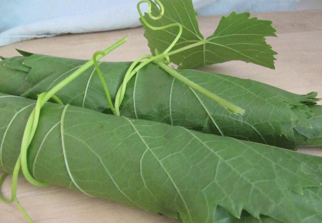 Чем полезны листья винограда