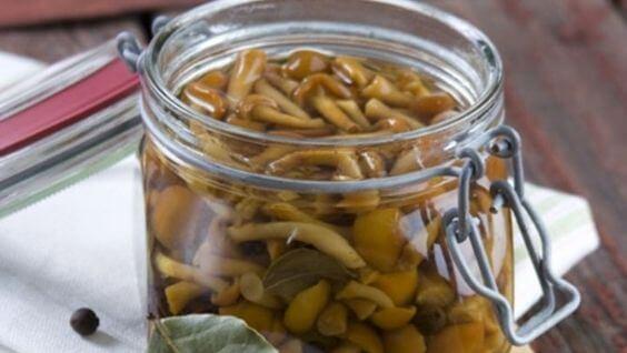 Как солить опята - лучшие рецепты зимних заготовок