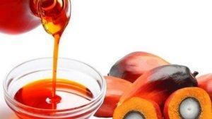 Пальмовое масло - полезные и опасные свойства